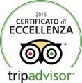 La colonia felina di Largo di Torre Argentina su Tripadvisor - Rome Cat Sanctuary on Tripadvisor